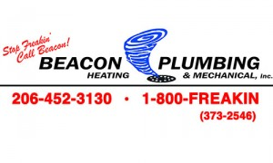 Commercial Plumbing in Olympia