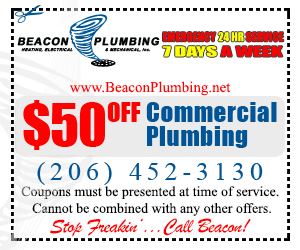 Snohomish Commercial Plumber